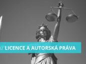Co jsou licence a autorská práva